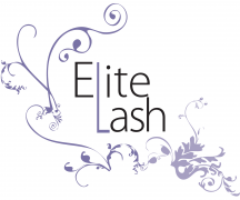 Elite lash studio boston 39 s best eyelash extensions for Eyelash extension gift certificate template